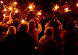 Tree of Light 2008